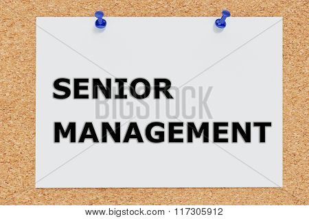 Senior Management Concept