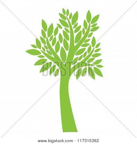 Green tree on white background