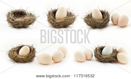 Composition With Empty Nest And Big Eggs Inside The Small Nests, Isolated On White
