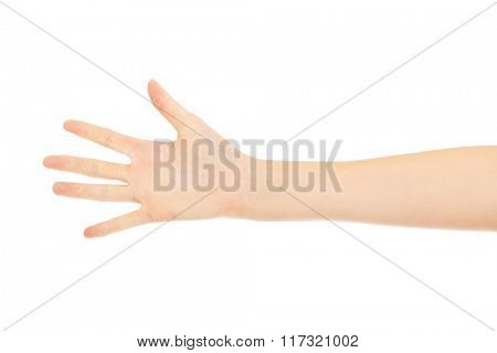 Woman palm with five fingers