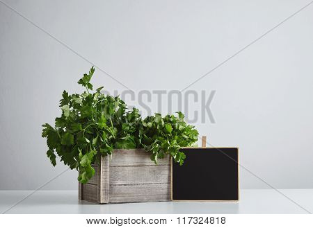 Wooden Box Parsley Cilantro With Price Tag