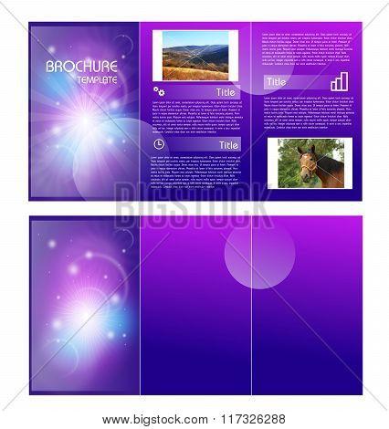 Purple Brochure Template