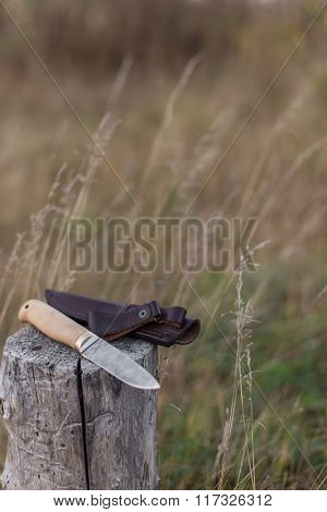 Damascus Steel Knife On Log