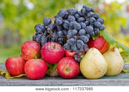 fruits in wooden table outdoor in the garden