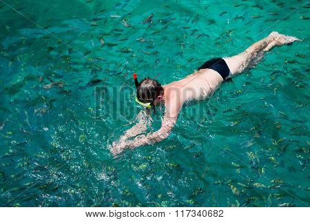 Man swims among the fish in a mask and a snorkel. Phi Phi Islands, Andaman Sea, Thailand.