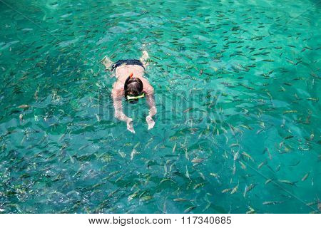 Man swims among the fish in the mask. Phi Phi Islands, Andaman Sea, Thailand.