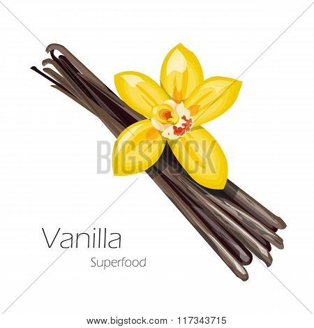 Vanilla flower and pods.
