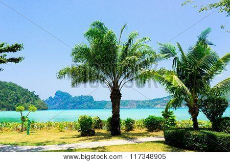 Green Getaway Jungle Lagoon