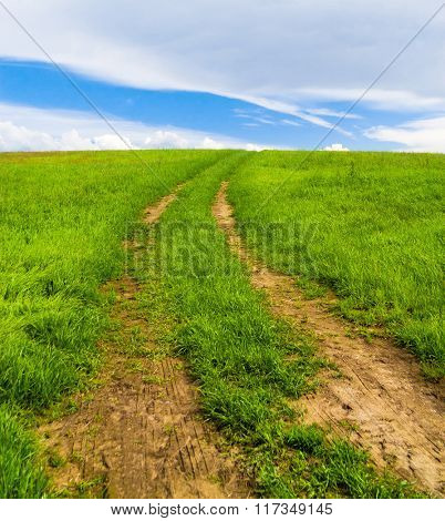 Acres Wild Road and Nobody