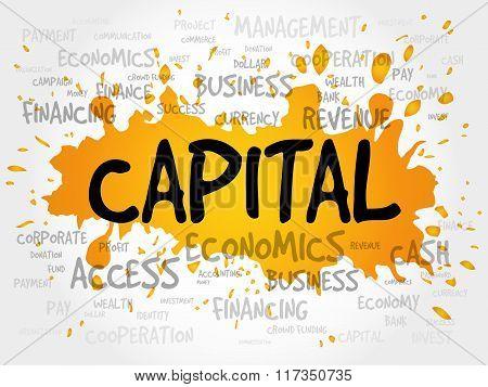 Capital Word Cloud