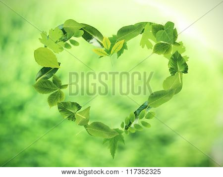 Heart of different  green  leaves, on nature background