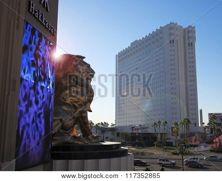 An Mgm Lion At Tropicana And Las Vegas Boulevard