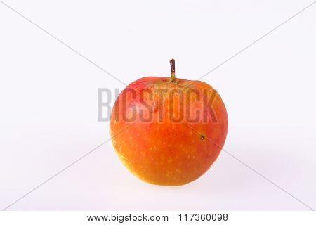 Worm on an apple