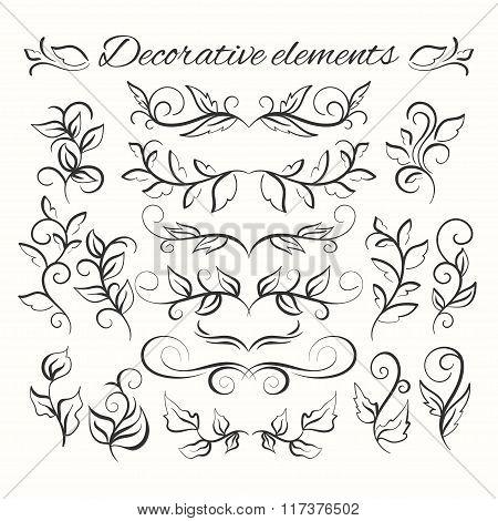 Hand drawn divders set. Ornamental decorative elements. Floral set.