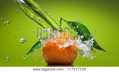 Tangerine with green leaves and water splash on green background. Header for website