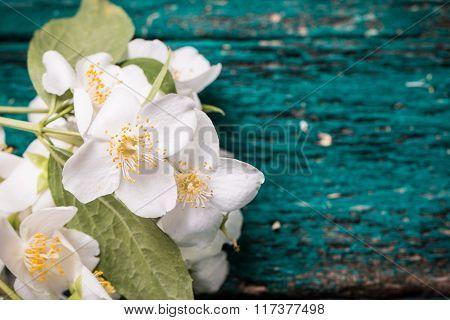 Jasmine flower on old wooden table, vintage style