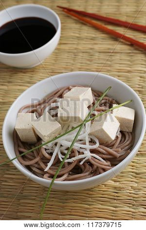 Soba noodle soup with tofu, daikon radish and green onion