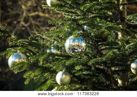 Christmas Tree Branch Decorated With Silver Balls