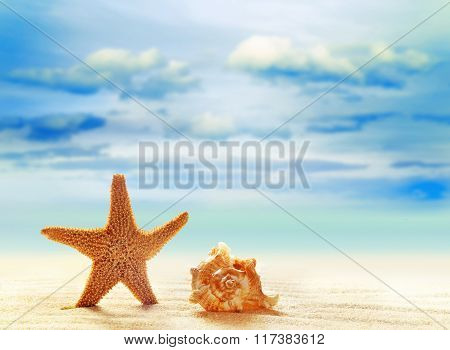 Starfish and seashell on white sand beach with ocean