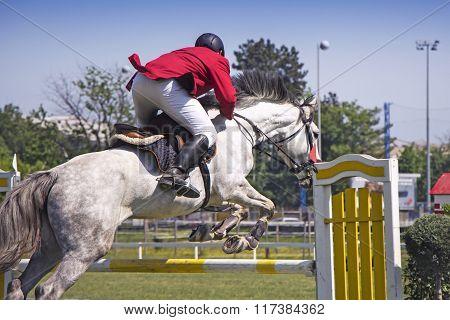 Rider Jumping On Horseback