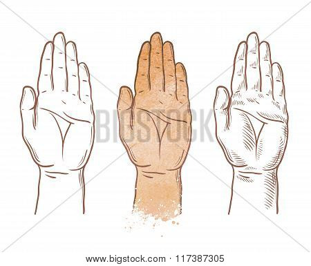 hand up vector logo. chiromancy, palmistry or palm icon