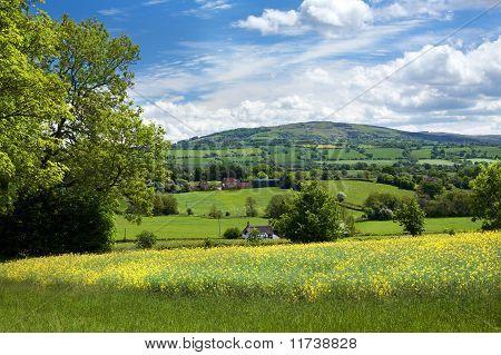 Rural Shropshire in Summer, England