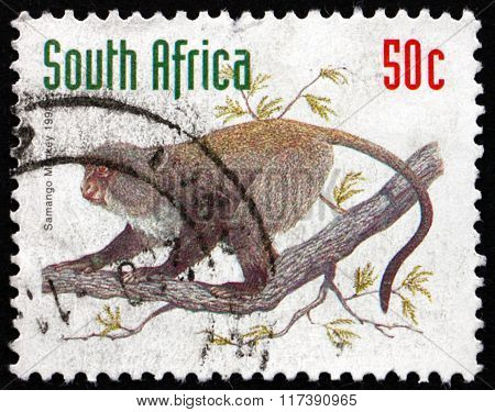 Postage Stamp South Africa 1998 Samango Monkey, Old World Monkey