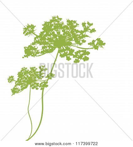 Plant Green Silhouette