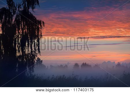 Colourful sky at sunrise and forest hills in morning fog