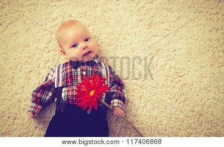 Happy Baby Boy Gentleman With Flower