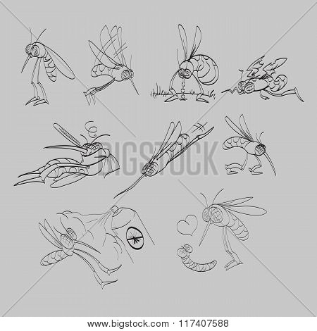Line drawing mosquitoes illustration set