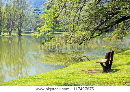 wooden chair at lake garden at Taiping Malaysia