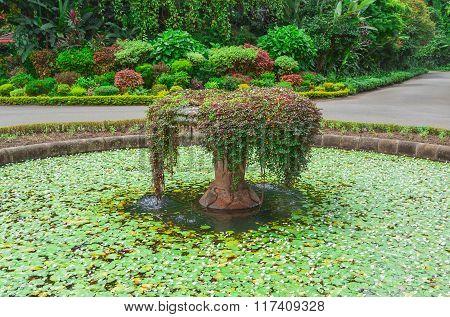 Botanical Garden, Kandy, Sri Lanka