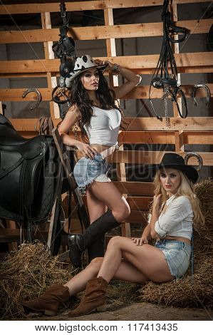 Two beautiful girls, blonde and brunette, with country look, indoors shot in stable, rustic style