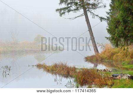 Autumn River Scene In Strong Fog