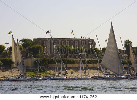 Felucca sailing boats, river Nile Egypt