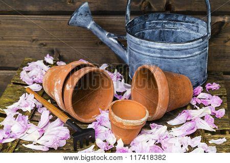 Still Life With Flower Pot