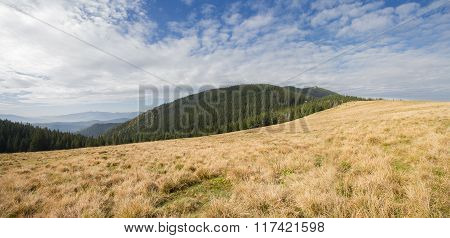 Panoramic View Of The Plains And Mountains. Carpathians
