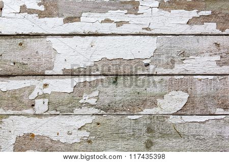 Old Fence Boards With White Paint Flaking Off