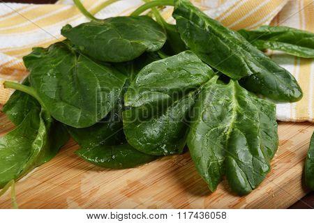 Organic Spinach