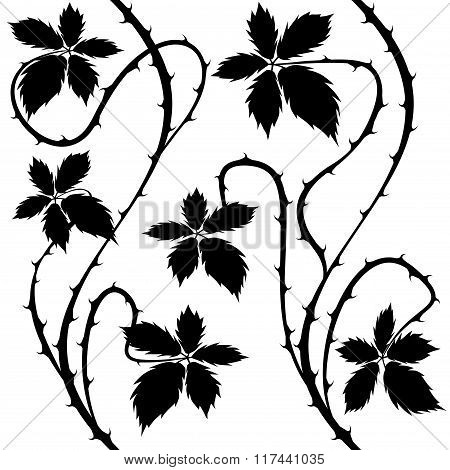 Bush. Floral Seamless Black and White Vector.
