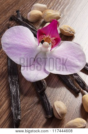 Pistachio Nuts, Blooming Orchid And Fragrant Vanilla Sticks, Cosmetic Ingredients