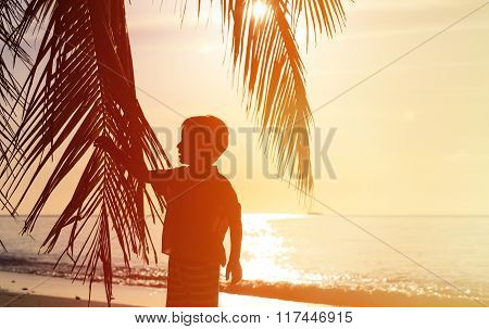 Silhouette of little boy on the beach with palm tree