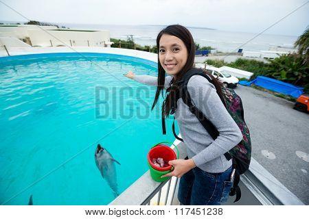 Asian Woman feeding dolphin in aquarium