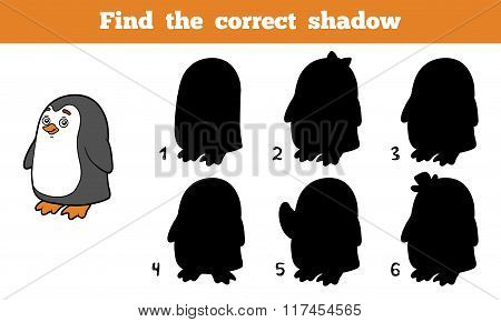 Find The Correct Shadow (penguin)