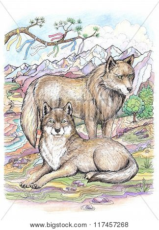 The Wolf And The Female Wolf