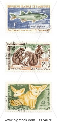 Animais em selos de postagem de África