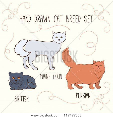 Cat Breeds Vector Set. Hand Drawn Cats Illustration.