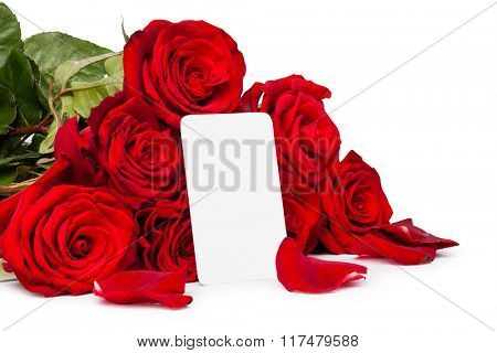 Red roses with a blank gift tag  isolated on white background