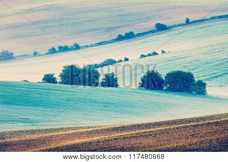 Vintage retro effect filtered hipster style image of Rolling landscape of green fields in South Moravia, Czech Republic in early morning